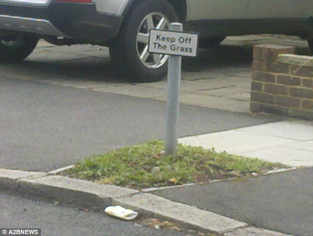 stipid keep off the grass sogn