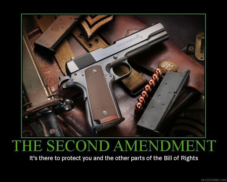 Funny Gun Control Signs L