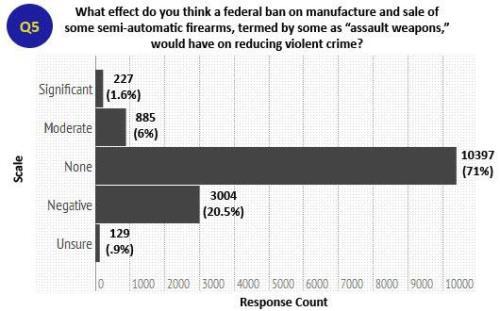 Gun Survey 1