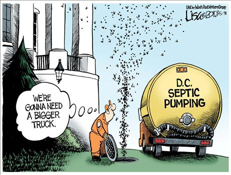 DC Septic Cartoon