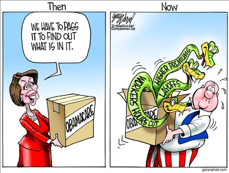 Obamacare Cartoon 9
