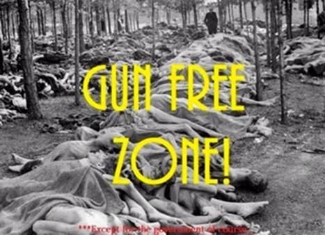 Gun Control Jan 2014 4