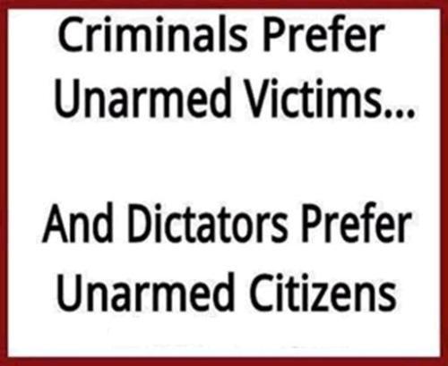 Gun Control Jan 2014 5